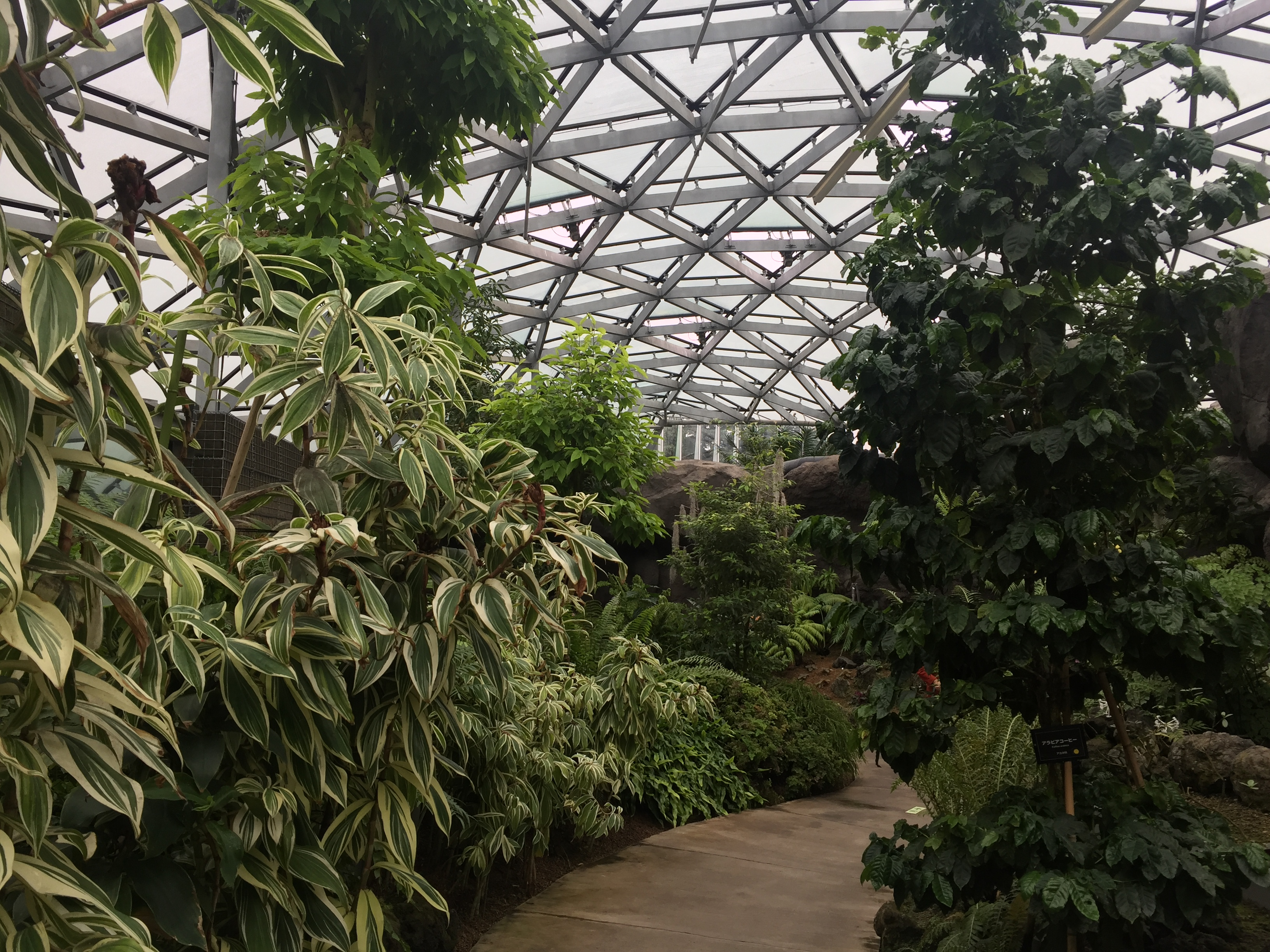 Japon 3 jour 6 for Jardins jardin 2016